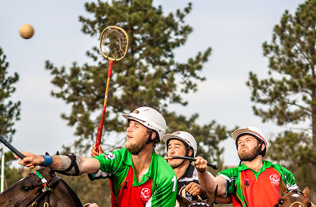 Gay Polo Returns to Wellington