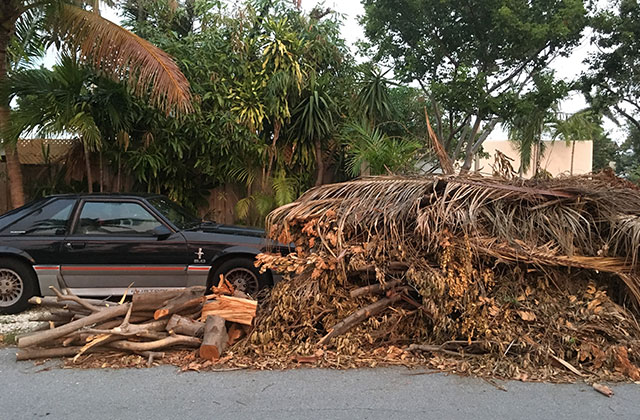 City Says Debris Removal Should be Complete in 60 Days