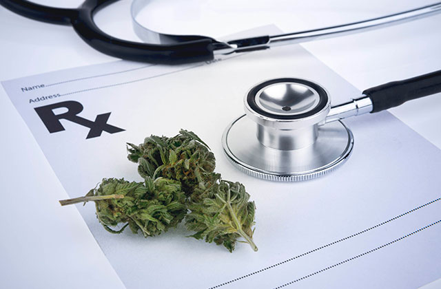 Florida Study to Examine Medical Marijuana Benefits in Fighting HIV