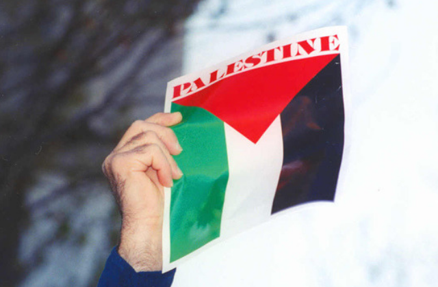 Should Queers Support Palestine?