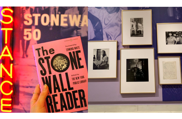 Jesse's Journal: Stonewall Before & After, Some Recent Histories