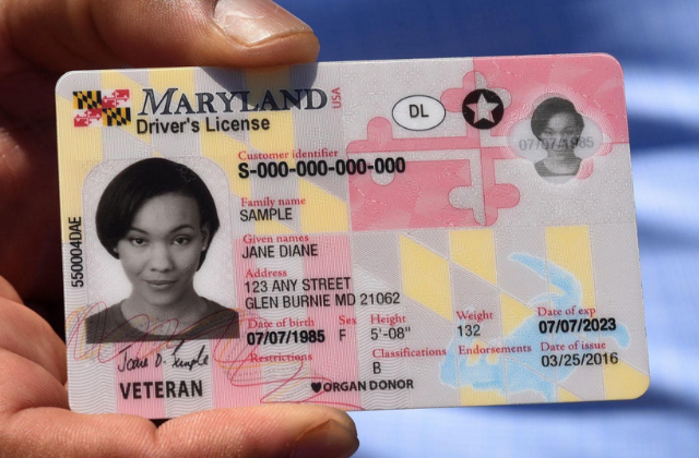 Maryland to add non binary gender marker to driver's licenses