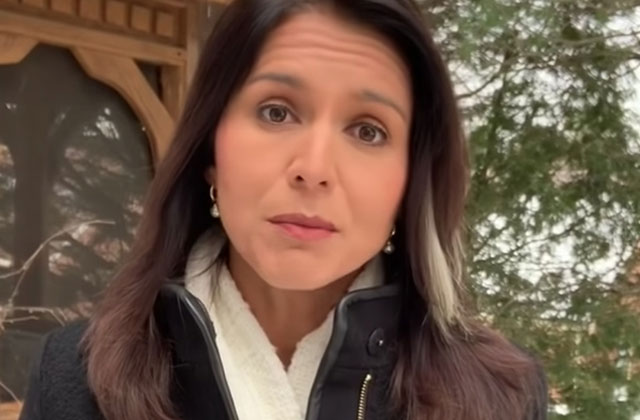 Tulsi Gabbard Apologizes for Anti-Gay Past in New Video