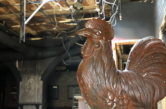 $44,000 Raised to Rebuild Roosters in One Week After Fire