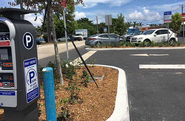 Backlash Over Paid Parking Directed At Business Owners