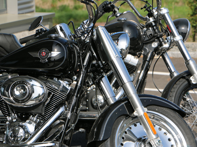 OpEd: Motorcycle Gang Threatening Residents' Safety