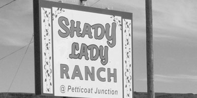 Shady Lady Ranch Offers Male Prositutes